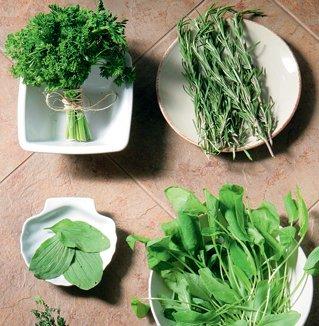 Какие травы можно употреблять при сосудистом заболевании головы