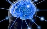 Улучшаем работу мозга и памяти