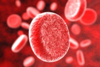 Лечение анемии народными средствами в домашних условиях, как вылечить анемию в домашних условиях