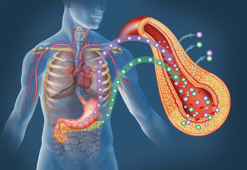 лекарства при повышенном холестерине у женщин