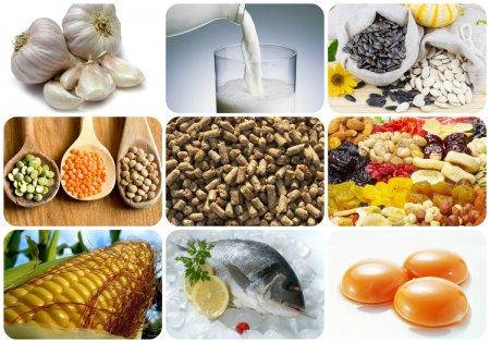 Продукты богатые фосфором