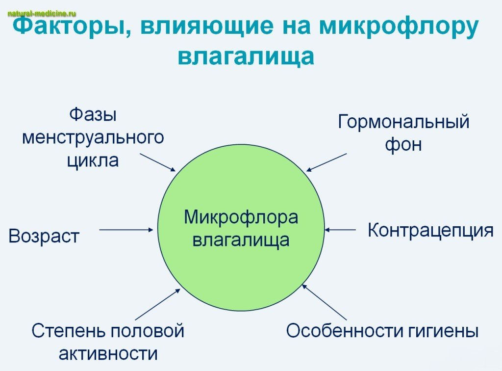 bakterii-dlya-vlagalisha