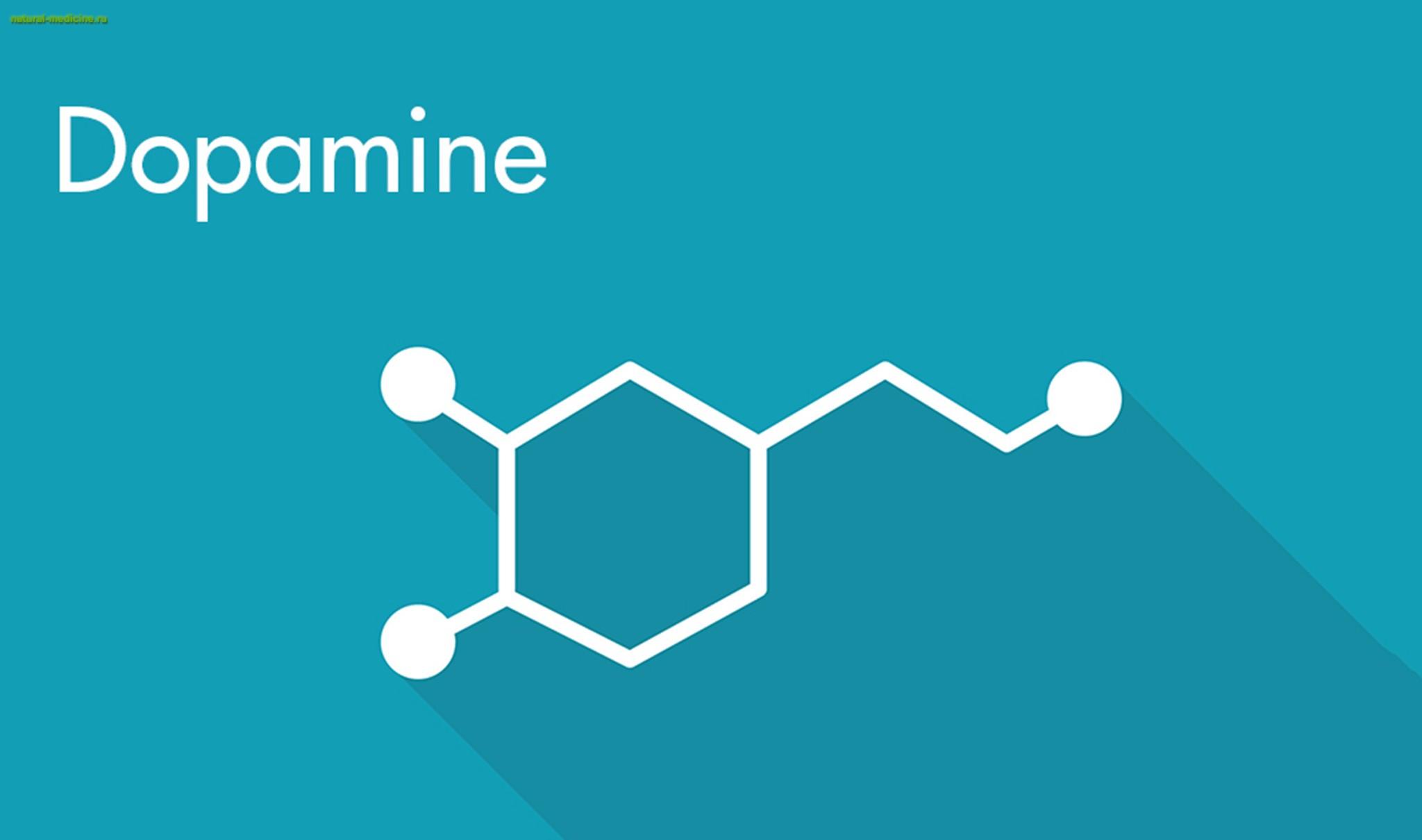 Дофамин выделяется при сексе